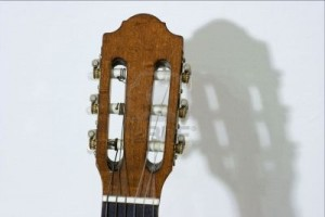 609291-acoustic-guitar-head-and-it-s-shadow
